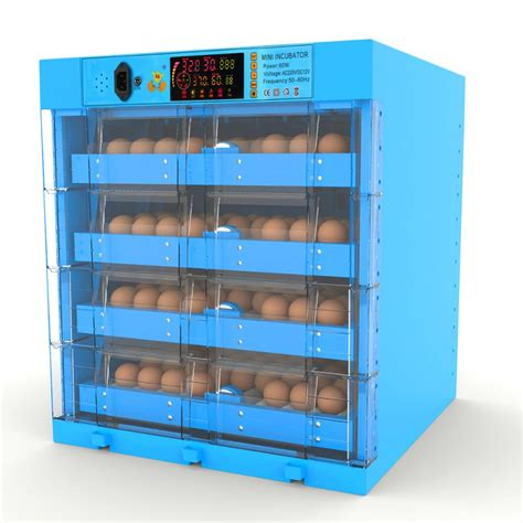 What is an Egg Incubator?