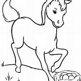Horse Coloring Miniature Pages Getcolorings Print sketch template