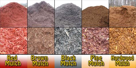 types of landscape different types of mulch