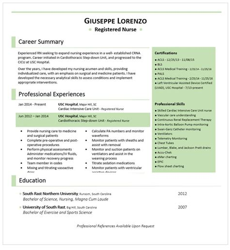 Best Color For Resume by 52 Best Best Resume And Cv Design Images On Cv Design Resume And Cv