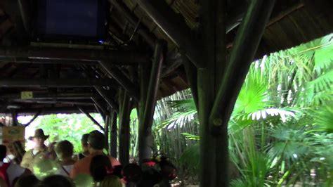 fast pass   kilimanjaro safaris animal kingdom