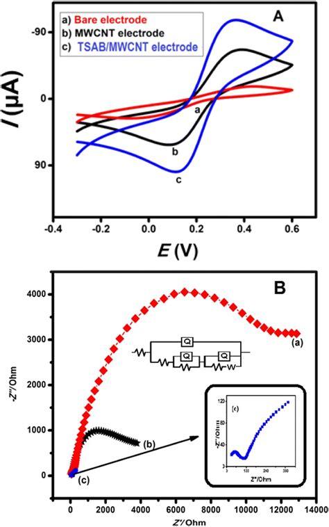 cyclic voltammogram  bare electrode  mwcnt electrode     scientific