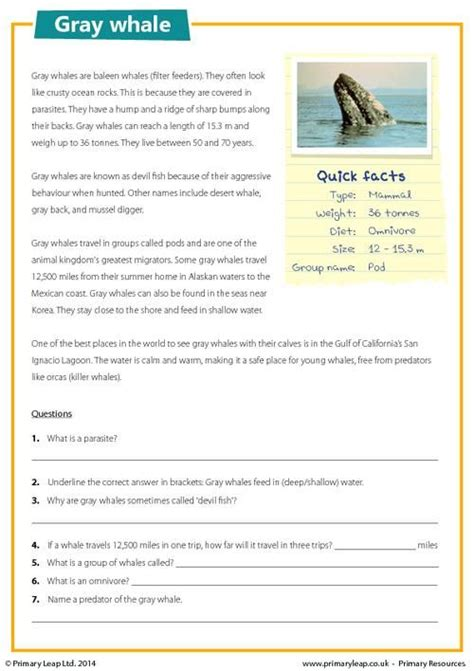 primaryleap co uk gray whale reading comprehension worksheet comprehensions primary leap