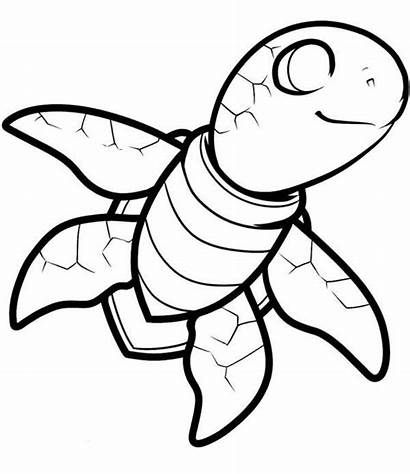 Turtle Coloring Sea Smiling Pages Turtles