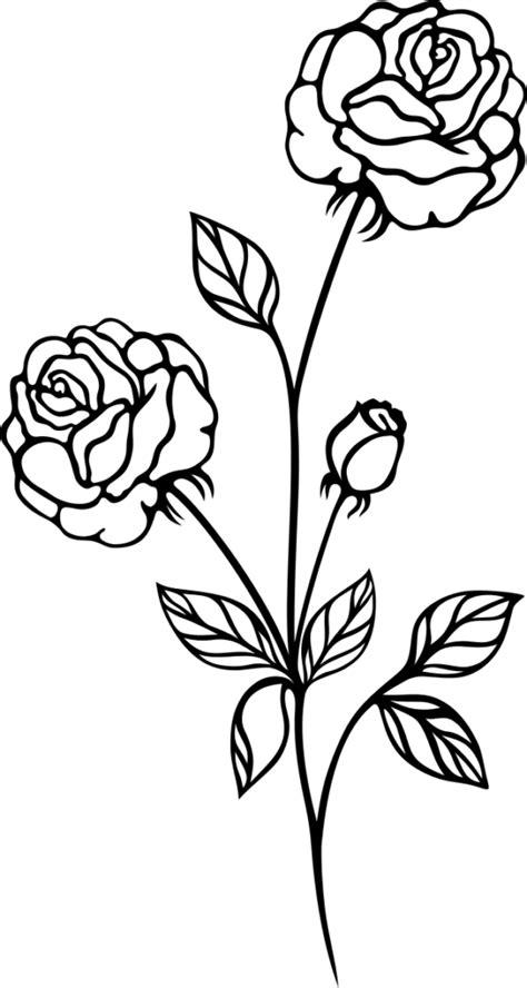 Dead Rose Tattoo Drawing - rose tatoo