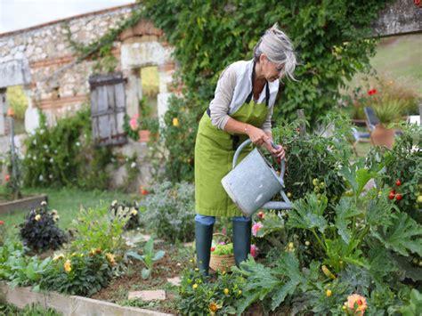 kitchen garden tips tips for maintaining kitchen garden boldsky com