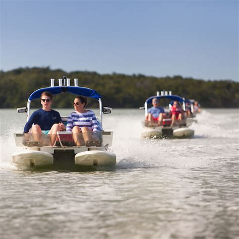 Ultimate Sw Adventures Boat Tour coupons must do day trips tours around fort myers