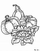 Coloring Pumpkin Sunflower Gourds Gourd Skip Pumpkins sketch template