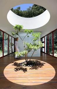 Arbre D Intérieur : arbre int rieur et ouverture au plafond chinkara house par soliscolomer y asociados ~ Preciouscoupons.com Idées de Décoration