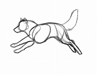 Wolf Cycle Run Running Drawing Sketch Dog