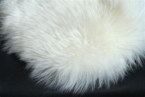 white fluffy rug rug roselawnlutheran