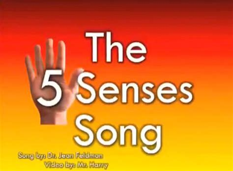 the 5 senses song work ideas sentidos educacion y 5 | 96840e6f8f3dcd5a6ca06e3aa2bc8b5f senses preschool senses activities