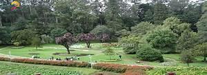 Ooty Botanical Garden, Botanical Garden Entrance fees ...