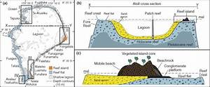 Atoll And Reef Island Morphology And Structure   A