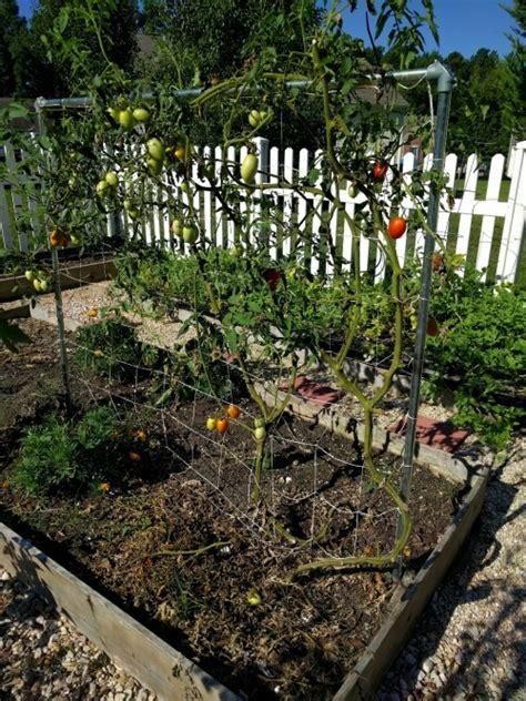 Vegetable Gardening Tumblr