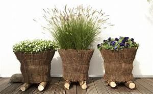Blumen Für Schattigen Balkon : ziergr ser im topf f r terrasse und balkon blumen stauden garten garten ideen und garten deko ~ Orissabook.com Haus und Dekorationen