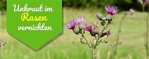 Rasen Vertikutieren Ja Oder Nein : rasenpflege ~ Buech-reservation.com Haus und Dekorationen