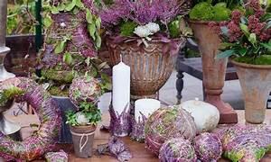 deco dautomne romantique avec la bruyere erica With chambre bébé design avec fleur de bach bruyere