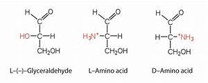 Properties Of Amino Acids