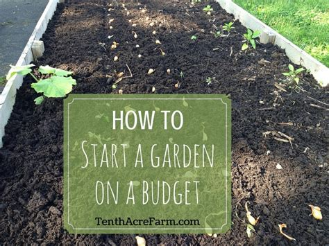 how to start a garden on a budget tenth acre farm