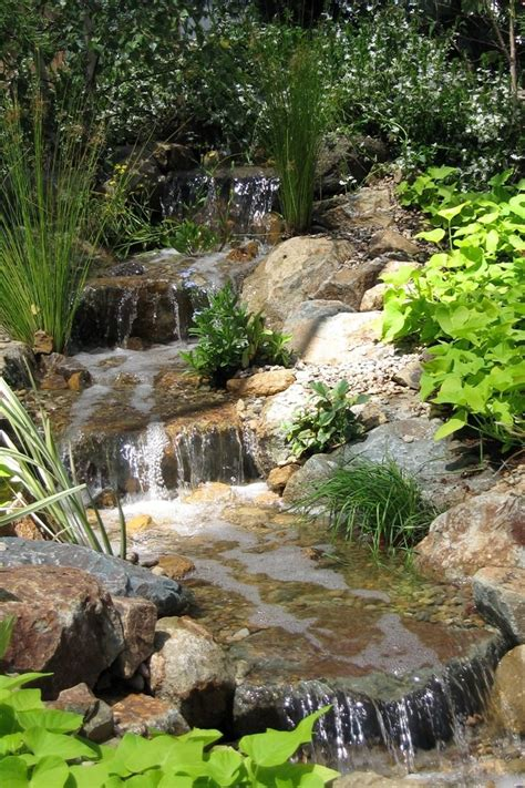 Backyard Streams And Waterfalls by 783 Best Images About Backyard Waterfalls And Streams On
