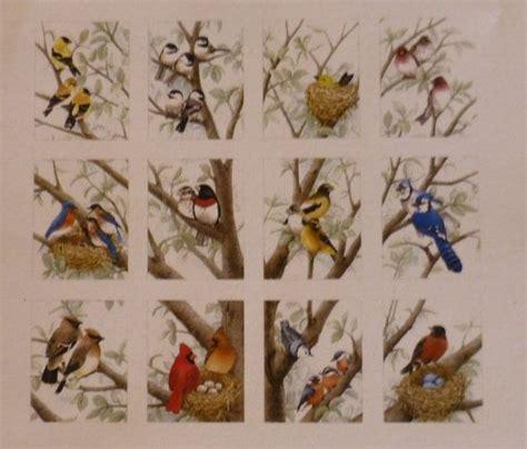 cotton fabric home decor quilt bird quot beautiful birds quot elizabeth 39 s studio by the panel fast