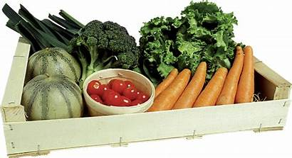 Fruit Vegetable Crate Cm Produits Packaging Vegetables
