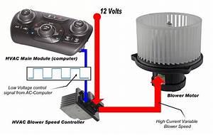 Hvac Blower Motor  U0026 Circuit