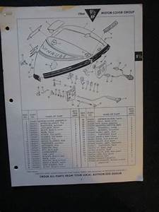 Sell 1964 Evinrude Outboard Motor 9 1  2 Hp Parts Catalog