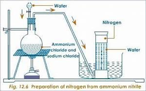 Diagram For Hydrogen Gas : notes on nitrogen grade 9 science some gases ~ A.2002-acura-tl-radio.info Haus und Dekorationen