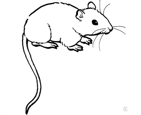 21+ Mouse Templates, Crafts & Colouring Pages