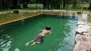 Swimmingpool Selber Bauen : schwimmteich selber bauen teil 1 natural pool organic ~ Watch28wear.com Haus und Dekorationen