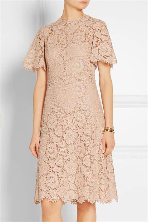 valentino cotton blend lace dress net  portercom