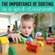 The Importance Of Sorting for Children in a Special ...