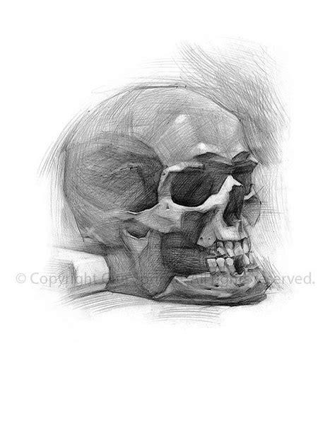 Skull Decor Art Print Drawing Gitasdrawings