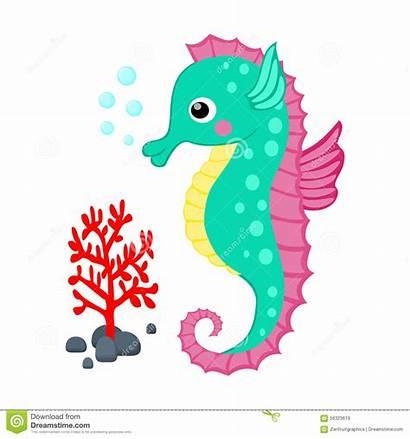 Sea Seahorse Cartoon Clipart Creatures Coral Vector