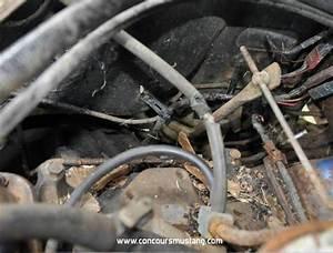 1967 Power Brake Booster Hoses