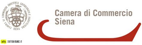 camera  commercio  siena