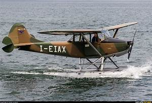 I-EIAX - Private Cessna L-19/O-1 Bird Dog at Off Airport ...