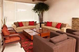 Palmen Für Die Wohnung : palmen in der wohnung berwintern so wird 39 s gemacht ~ Markanthonyermac.com Haus und Dekorationen