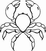 Crab Coloring Pages Printable Coloringpages101 Animalplace sketch template