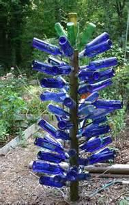 bottle tree bottle bush in garden walter reeves the gardener