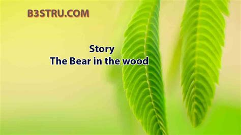 write  story   bear   wood bstru  bear