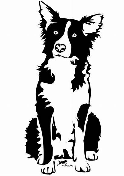 Collie Tattoo Border Silhouette Dog Drawing Stencil