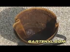 Dünger Für Tomaten : kaffeesatz als d nger f r blumen tomaten gem se kaffeesatzd nger im garten youtube ~ Watch28wear.com Haus und Dekorationen