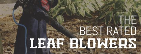 Best Rated Leaf Blowers  Trust Those Who Know What They