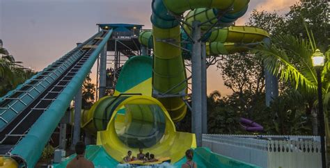 what time does busch gardens open dates announced for summer nights at busch gardens