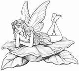 Fairy Sketches Coloring Drawings Down Adult Garden Pencil Tattoo Dibujos Sketch Lay Wind Drawing Coroflot Books Reprint Colorear Fantasy Gothic sketch template