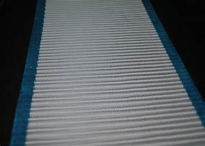 Paper Making Polyester Dryer Screen    Spiral Wire Conveyor Belt Mesh Customized