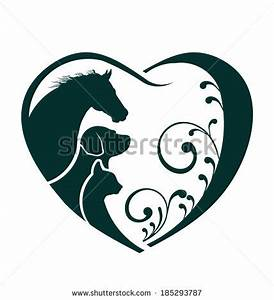 Horse Veterinarian Stock Photos, Images, & Pictures ...